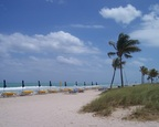 Furled umbrella palisade, waving palms, beach, clouds, Bal Harbour, Miami