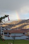 Kantuta, Peru's national flower, and a rainbow