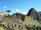 Worker's area on the east side, with lone tree and Huayna Picchu