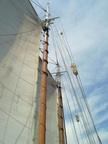 The fluffy bits are to protect the sail where the line in it would rub against the halyard