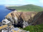 Sumburgh Head bird colonies near Lerwick, Shetland Islands