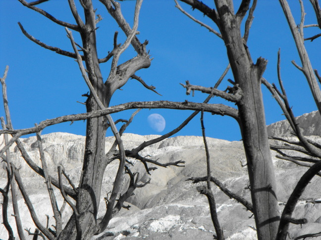 Moon over Mammoth Hot Springs, Yellowstone