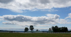 Clouds across the horse farm, Bithell WA