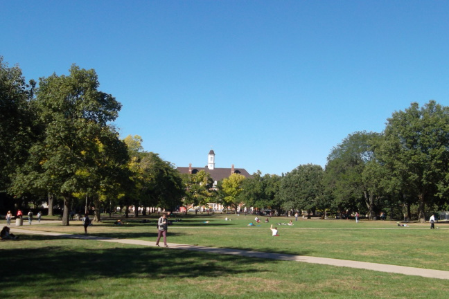 The quadrangle at U of Illinois has always been expansive