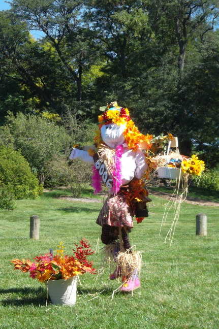 Morton Arboretum had a whole bunch of scarecrows for Fall