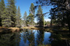 Reflections in Donner Creek