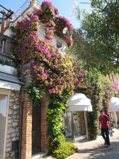 "Our guide Jan called this the ""fancy street"" in Capri - Dior, Chanel, etc. and bougainvilla"