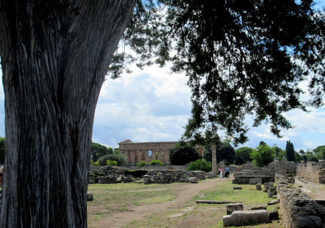 More Paestum Greek ruins, site uncovered under Mussolini from centuries of flood damage