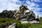 Twisted rocks in the Falklands