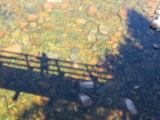 Shadows on the rocks and clear water, Salmon River