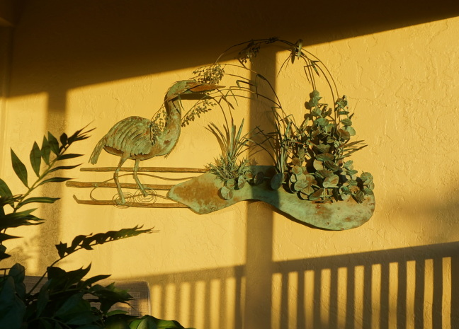 Sunset glow bathes the flamingo on our deck